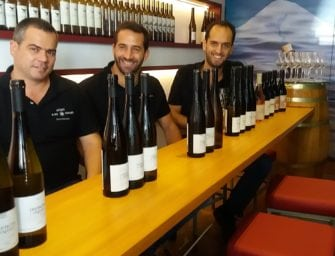 Azores Wine Company: vertical tasting, vertical growth