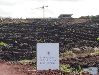Azores Wine Company: new 2018 releases & new developments
