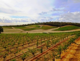 200 fine wines later: Arblaster & Clarke South Australia & Victoria vintage tour