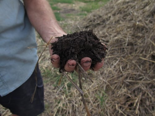 It's all about the soil - compost at Sorrenberg