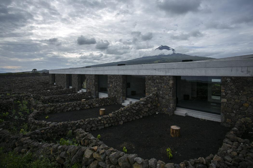 Azores Wine Company winery