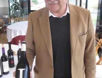 My Portuguese Wine Guide Part 3: Bairrada DOC/Beira Atlântico VR