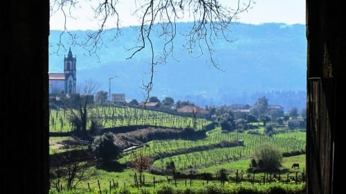 douro blend day 2 014