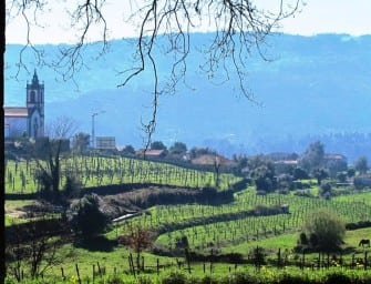 My Portuguese Wine Guide: Part 1, Vinho Verde