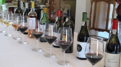 A line up of Muxagat wines