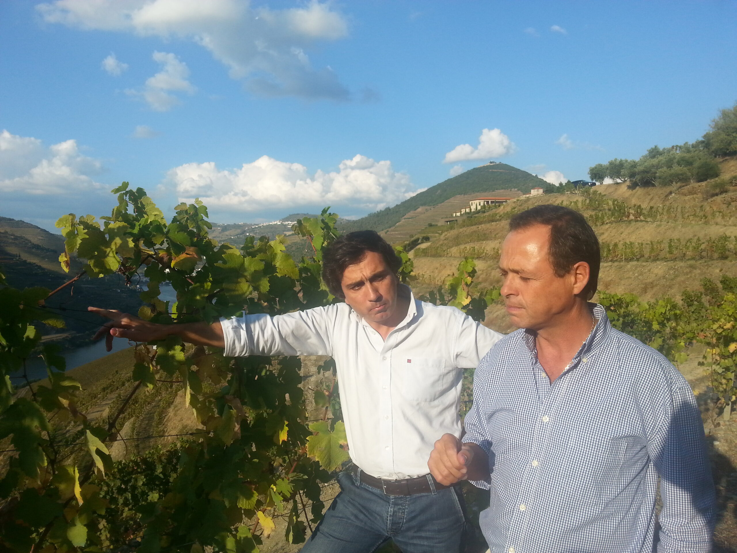Luís Sottomayor, tasting out in the field, at Quinta do Seixo, vintage 2014