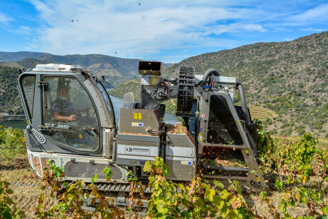 Douro_Harvester_SymHoffmann_2019_01