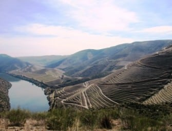 Wines with altitude: Duorum Reserva O. Leucura Cota 200 & Cota 400