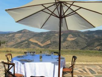 Intimate & insightful Douro wine tastings & tours – join me!