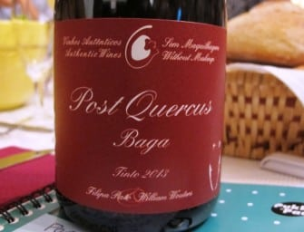 An exciting amphorae-aged Baga: Filipa Pato & William Wouters Post Quercus Baga 2013