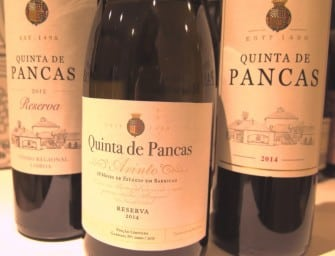 Quinta de Pancas, Lisboa: a welcome return to form