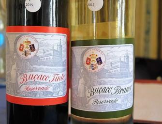Bussaco Palace Hotel: 2015 vintage releases & some golden oldies