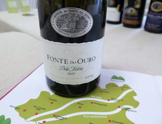 Dão: a visit with Boas Quintas & my first, rare Nobre (noble) classification wine
