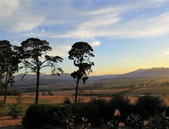 Yarra Valley Wine Women: a visit with Yeringberg