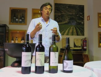 July Wines of the Month: single vineyard stunners from the Douro & Eden Valleys