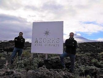 November Wines of the Month: a rare Azorean white & a rare red Douro snip