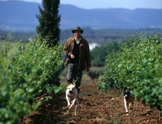 "João Portugal Ramos' ""best ever harvest"": 2011 releases, including new flagship Estremus"