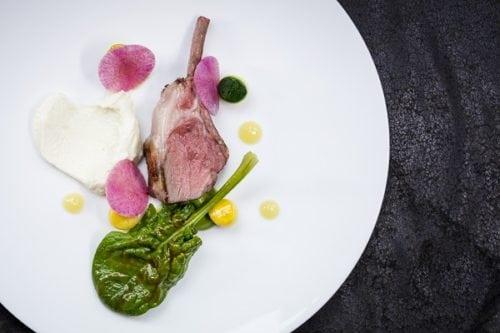 Lamb, rack & epigram, courgette, lemon forte (1)