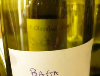 Not obviously Douro, not obviously Baga: a new wine from Quinta do Vale Meão