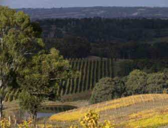 Adelaide Hills Chardonnay: six new releases