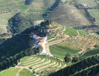 First taste: Quinta do Crasto 2014 Douro reds & Vintage Port