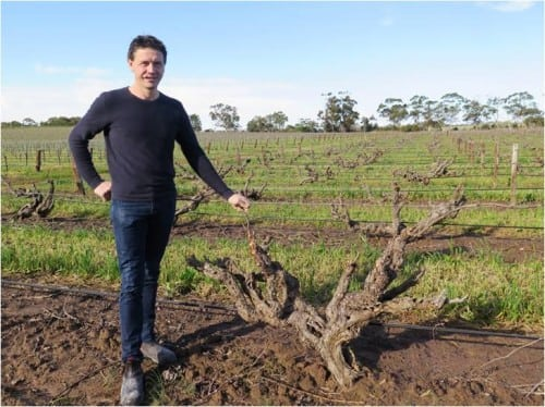 Riebke vineyard Mataro Grenache Kym Teusner