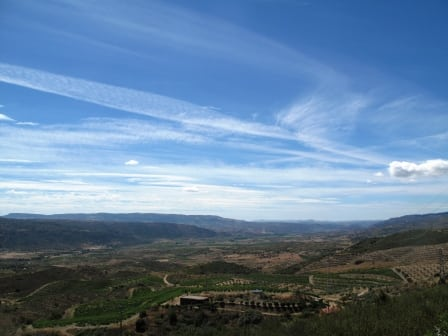 symington vilarica vineyards