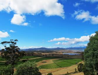 Brown Brothers: fresh adventures in Tasmania & Yarra Valley