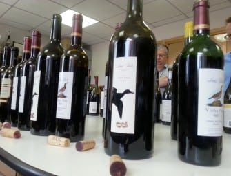 20 great Portuguese wines from The Wine Society