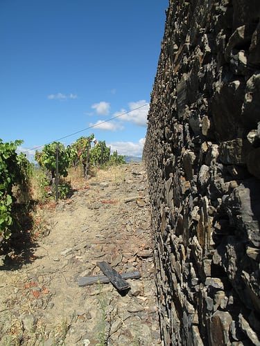 Schist, schist everywhere - soils, vine posts & terrace walls