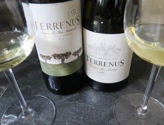 New Portalegre: Rui Reguinga's Terrenus Vinha da Serra White