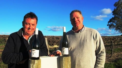 Woolf Blass White Winemaker Matt O'Leary with company viticulturist Roger Schmidt at the Rogers vineyard, Eden Valley